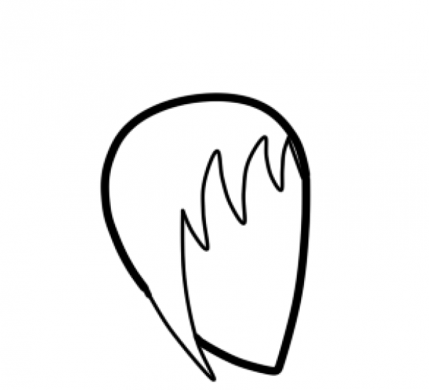 head pic 1.png