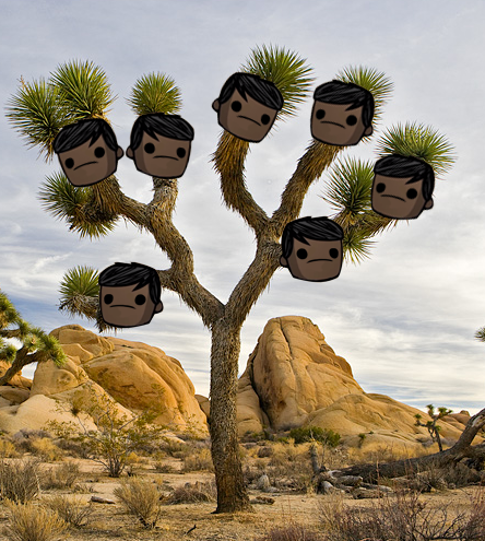 joshuatree.png.12ff30d9cdd57ac6d2be9ae6f23169f1.png