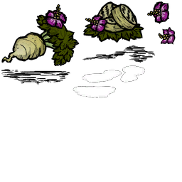 tuber_bloom_crop.png.d59be9f9de797d48d320668c4c3b6b05.png