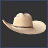 accessories_icon_cowboy_hat.png.b8cc9460a2846d88e746017cb813e13a.png