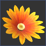 accessories_icon_orange_daisy.png.059045ea476d6caa2b3a578a7df63809.png