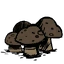 truffle.png