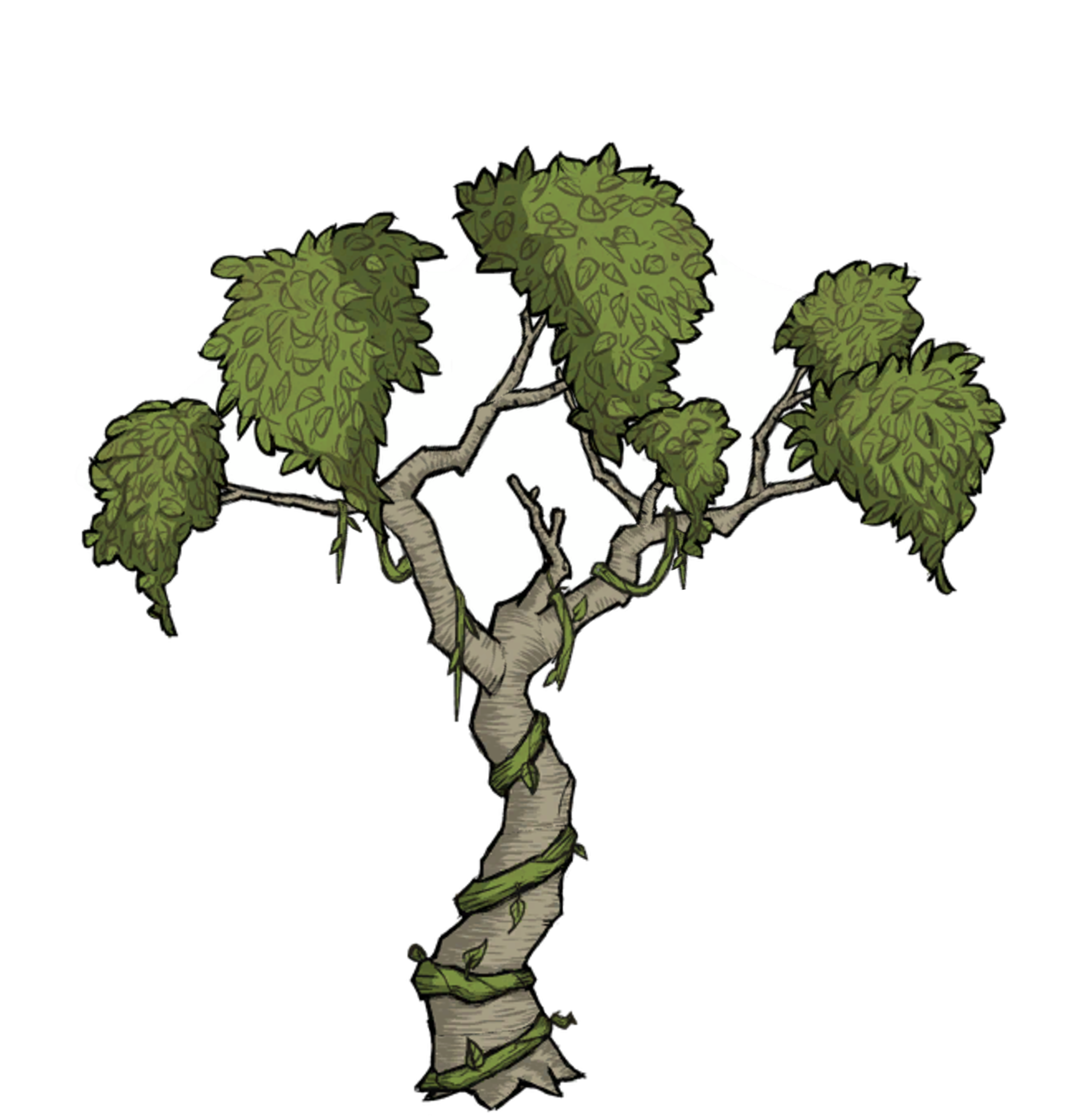 5e0e7a2c70260_treeforesttall.png.e33a91d5395a2bf36b9ab9b6a7118e69.png