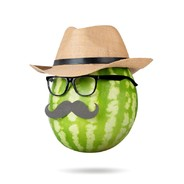 MelonKing